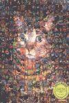 PAULINO VIOTA DVD