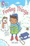 FEELING THINGS