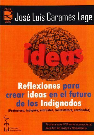 REFLEXIONES PARA CREAR IDEAS  EN EL FUTURO DE LOS INDIGNADOS