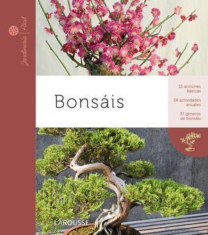 BONSAIS