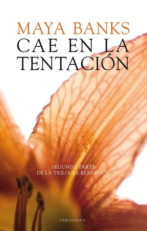 CAE EN LA TENTACION