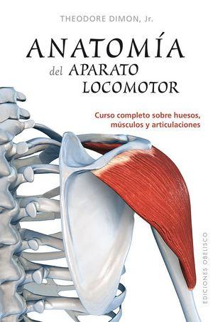 ANATOMIA DEL APARATO LOCOMOTOR