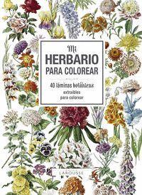 MI HERBARIO PARA COLOREAR