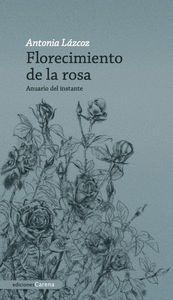 FLORECIMIENTO DE LA ROSA