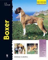BOXER (T)