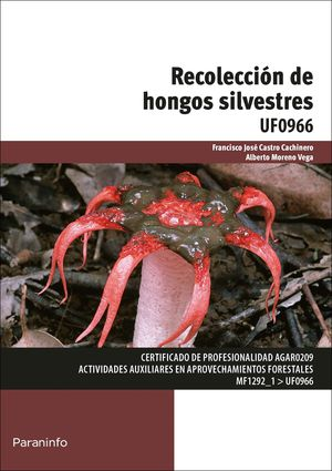 RECOLECCIÓN DE HONGOS SILVESTRES