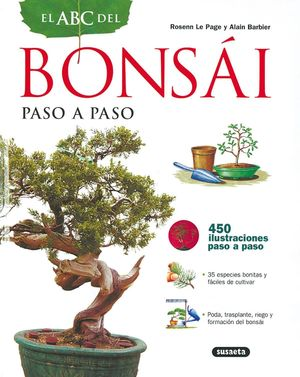 BONSAI PASO A PASO