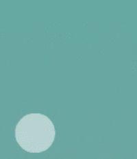 TREBEP VERSIÓN MARTINA (ESPIRAL)