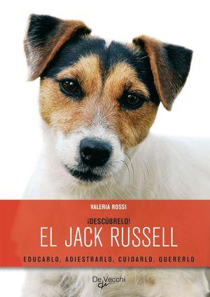 EL JACK RUSSELL ¡DESCUBRELO!