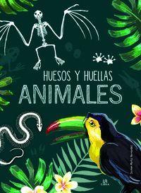 HUESOS Y HUELLAS ANIMALES