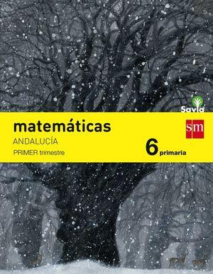 MATEMATICAS 6ºPRIM. TRIMESTRES SAVIA 2015