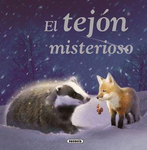 EL TEJÓN MISTERIOSO