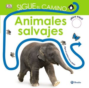 ANIMALES SALVAJES SIGUE EL CAMINO