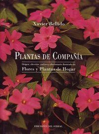 PLANTAS DE COMPAÑIA
