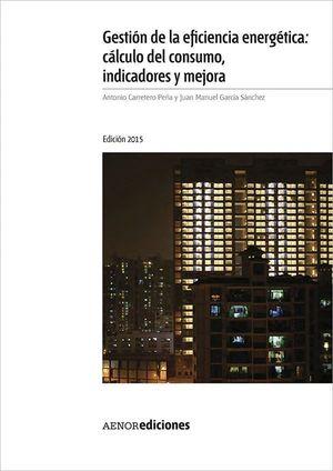 GESTION DE LA EFICIENCIA ENERGETICA: CALCULO DEL CONSUMO, INDICAD