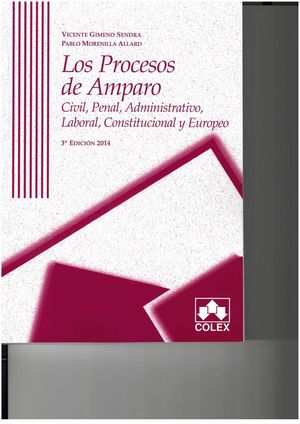 PROCESOS DE AMPARO