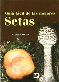 GUIA FACIL DE LAS MEJORES SETAS