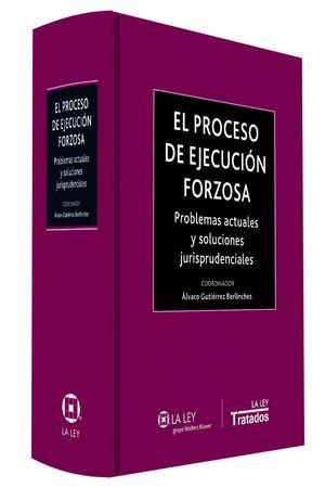 EL PROCESO DE EJECUCION FORZOSA