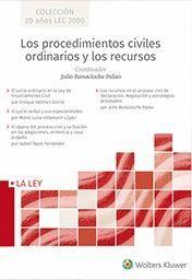 LOS PROCEDIMIENTOS CIVILES ORDINARIOS Y LOS RECURSOS (ESTUCHE 4 VOLS.)
