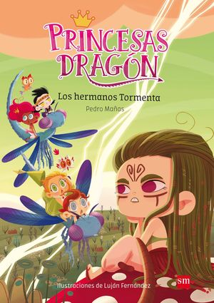 LOS HERMANOS TORMENTA (PRINCESAS DRAGON 5)