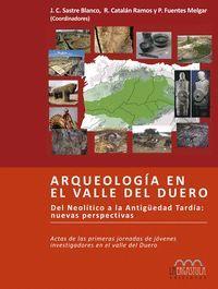 ARQUEOLOGIA EN EL VALLE DEL DUERO.ERGAST