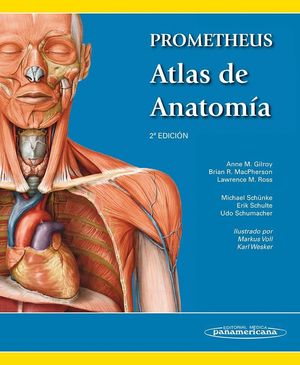 PROMETHEUS. ATLAS DE ANATOMÍA