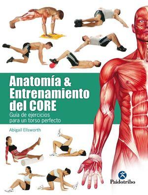 ANATOMIA & ENTRENAMIENTO DEL CORE